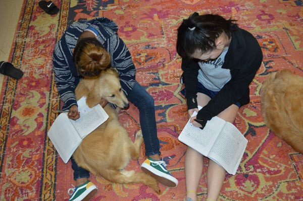 Two teen girls doing homework with their canines