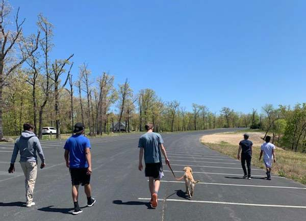 Boys walking the dogs